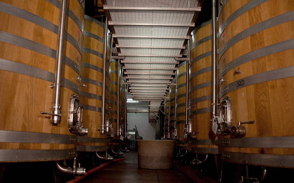tini-fermentazione